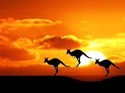 Tour Châu Úc Sydney-Canberra