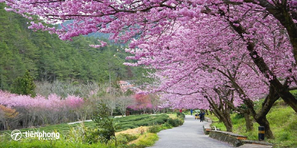 Du lịch Đài Loan - Tiên Phong Travel