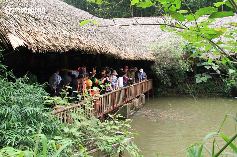 Làng nhà sàn Thái Hải - Du lịch Hang Hú - Tptravel