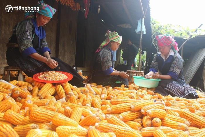 Rượu ngô Hà Giang - men say làm say lòng du khách