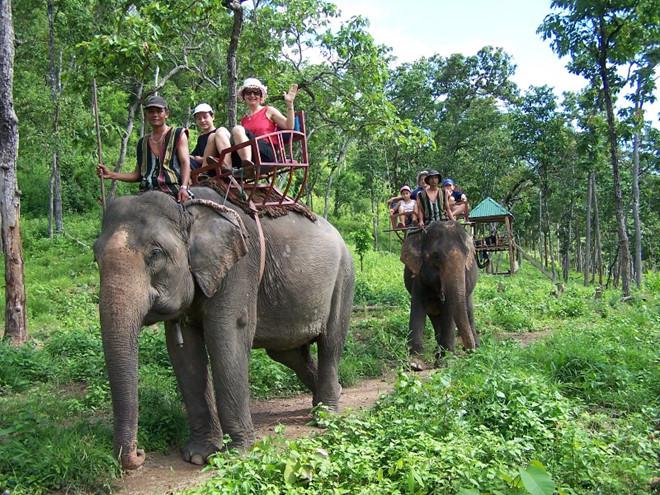 Du lịch Đà Lạt Buôn Mê Thuột Pleiku - Tiên Phong Travel