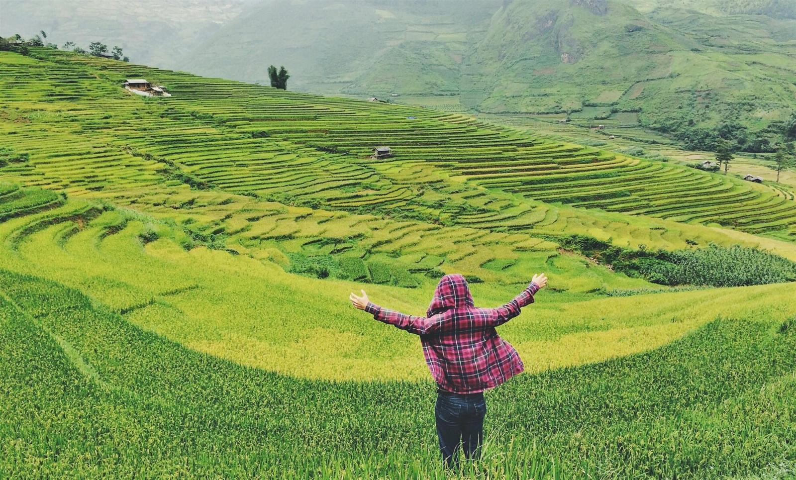 Mù Cang Chải mùa lúa chín - Tiên Phong Travel
