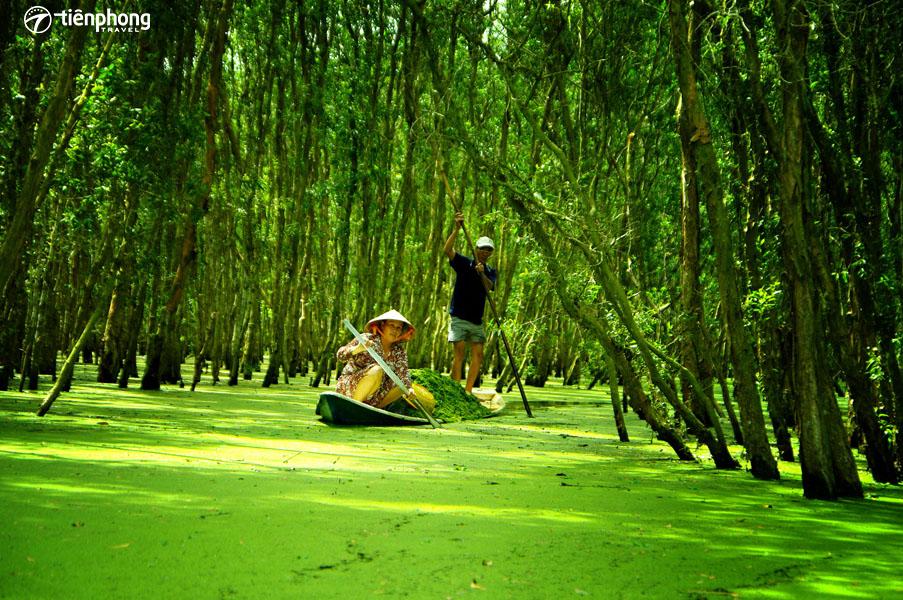 Du lịch Miền Tây hè 2019 - Tiên Phong Travel
