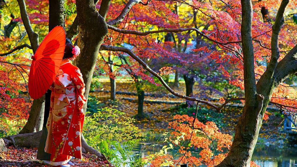 Du lịch Nhật Bản - Thời tiết mùa thu ở Nhật Bản - Tiên Phong Travel