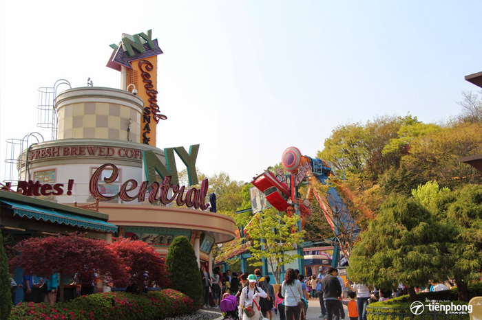 Come on NY in Everland Park