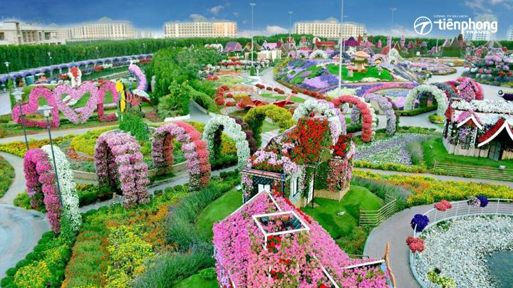 Đi đến Dubai tới vườn hoa kì diệu