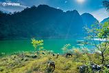 |Du lịch Cao Bằng| Khám phá Hồ Ba Bể và câu chuyện sự tích kì thú