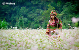 Hân hoan đón Lễ hội hoa tam giác mạch Hà Giang 2018 - Xách ba lô lên và đi!