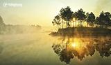 |Du lịch Mộc Châu| Say lòng trước vẻ thơ mộng của rừng thông Bản Áng