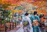|Du lịch Nhật Bản| Thời tiết mùa thu ở Nhật Bản