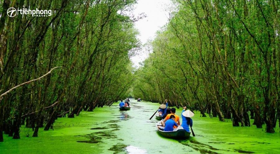 |Du lịch Miền Tây| Khám phá vẻ đẹp trù phú của rừng tràm Trà Sư An Giang