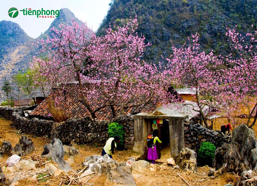 Kinh nghiệm du lịch Hà Giang bằng ô tô