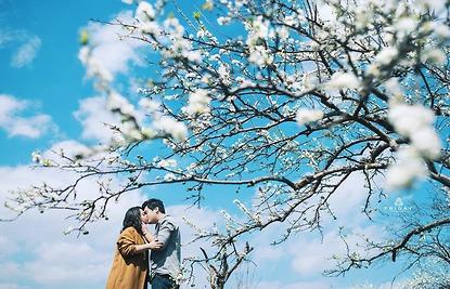 Mộc Châu mùa xuân