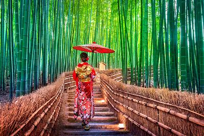 Du lịch Nhật Bản: Osaka-Kobe-Kyoto-Núi Phú Sĩ-Tokyo 6 ngày 5 đêm
