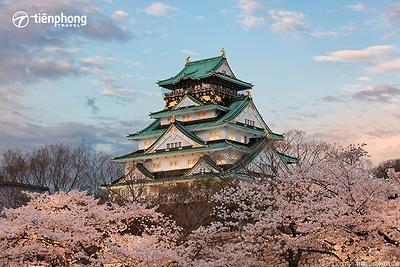 Du lịch Nhật Bản: Osaka-Kyoto-Nagoya-Núi Phú Sĩ-Tokyo 6 ngày 5 đêm