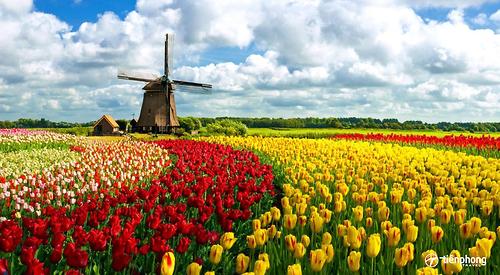 Du lịch Châu Âu: Pháp-Luxembourg-Bỉ-Hà Lan-Đức 9 ngày 8 đêm