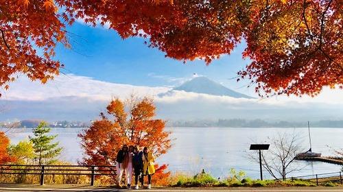 Tour Nhật Bản: Osaka-Nara-Kyoto-Núi Phú Sĩ-Tokyo