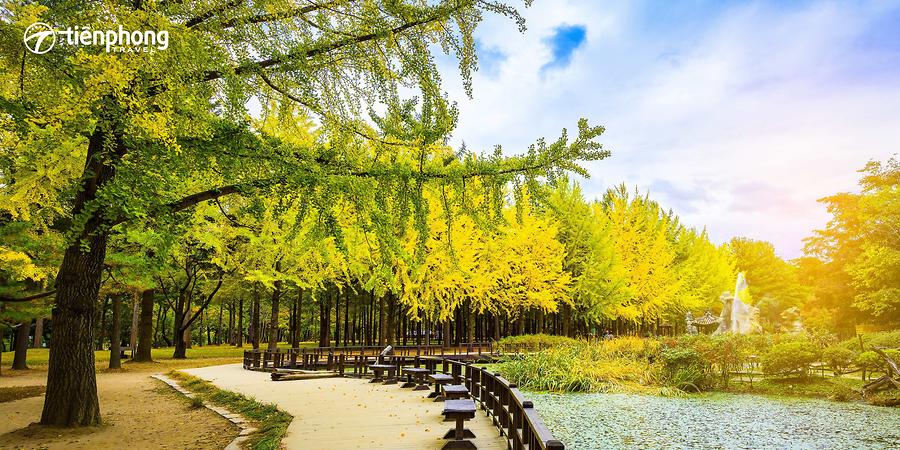 Du lịch Hàn Quốc SEOUL - NAMI – EVERLAND