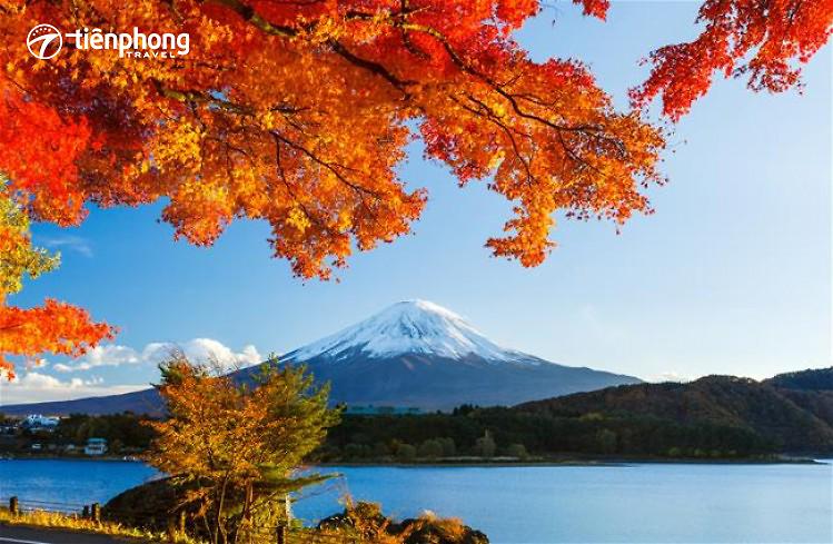 Du lịch Nhật Bản TOKYO – NÚI PHÚ SĨ – OSAKA – NAGOYA 6 ngày 5 đêm