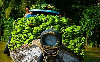 Sài Gòn - Mekong- Củ Chi