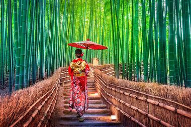 Du lịch Nhật Bản có gì đẹp?